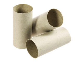 Diy 5 amazing things you can make with empty toilet paper for Things to make with toilet paper rolls