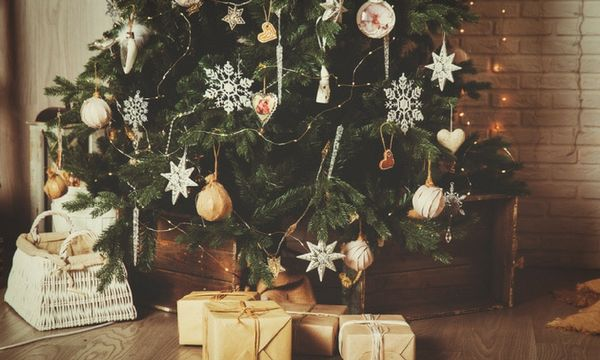 How to make your christmas tree last longer qu m s - Make christmas tree last longer ...